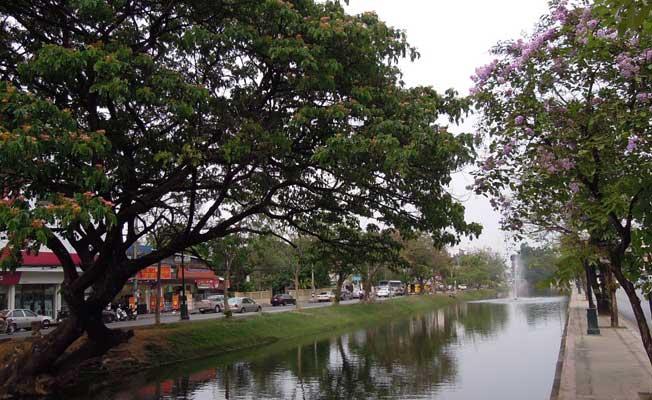 Peter-Dodek-ChiangMai-Thailand