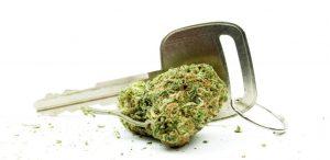 Marijuana-driving-1024x499
